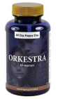 Orkestra All Day Happy Day 60vc