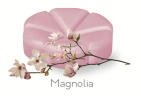 creations Geurchips magnolia 10 stuks