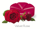 creations Geurchips velvet rose 10 stuks