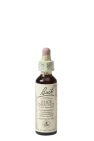 Bach Flower Remedies Paardekastanje 35 20ml