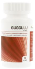 Ayurveda Health Guggulu 120 tabletten