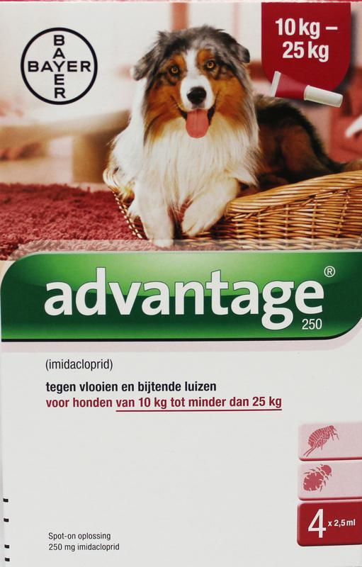 Advantage Hond 250 bestrijding vlo 4st